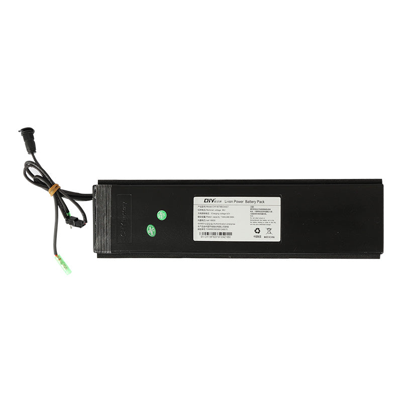 FIIDO Electric Bike 10.4Ah Battery For D4S