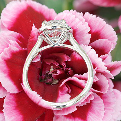 Style 103336: Cathedral Engagement Ring With A Round Pave Diamond Halo