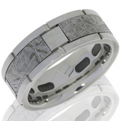 Style 103978: Cobalt Chrome 8mm Flat Band with 4 Meteorite Segments