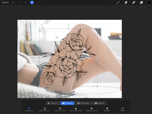 Peony Tattoo Set Brushes for Procreate application