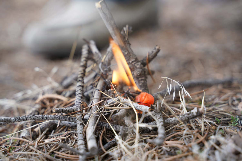 Waterproof Fire Starter – Summer Orange Blend