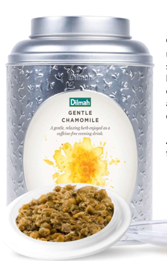 DILMAH VIVID TEA - Different Flavours