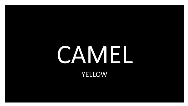 CAMEL YELLOW 10 PACKS