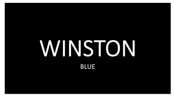 WINSTON BLUE 10 PACKS