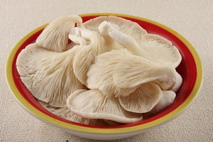 Baby Oyster Mushrooms 1kg