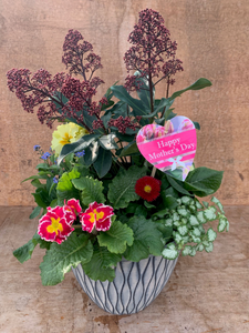 Mothers Day Planter (Laval) 26cm