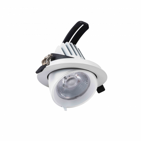 Led Downlight - Kantelbaar - 24W - Wit