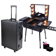 Makeup Bags and Train Cases