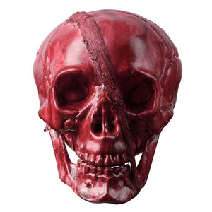 Halloween Skeleton Head Skull Halloween Prop Party Decor