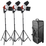 3x 800W Studio Photography Dimmable Continuous Lighting Kit