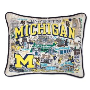 CatStudio | College Pride Pillow