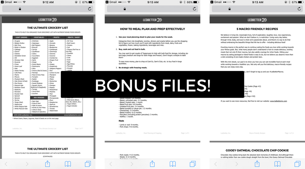Macro Counting Made Simple Bonus PDFs