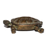 VINTAGE - Brass Turtle - MAN of the WORLD Online Destination for Men's Lifestyle - 2