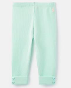Mint Lula Rib Legging