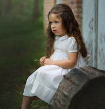 Load image into Gallery viewer, Ivory Blue Vintage Midgie Dress