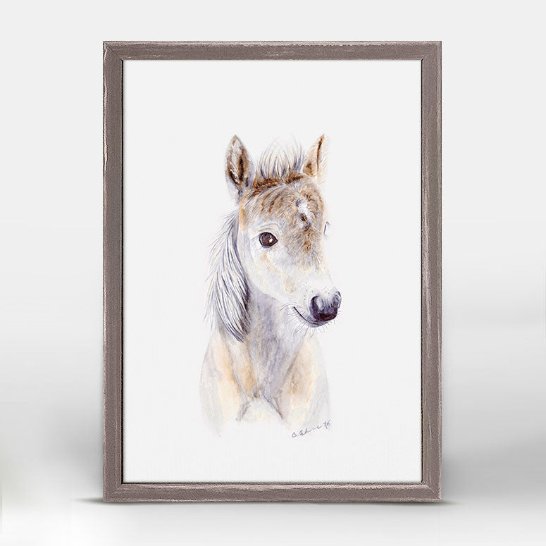 Baby Horse Portrait Animals Mini Framed Canvas