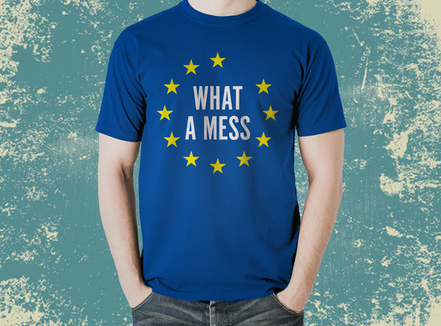 EU Must be Joking WHAT A MESS T-Shirt - The Official Aunty Acid Store