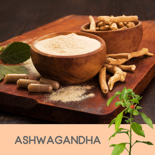 5 Reasons Ashwagandha Will Be Your Saving Grace
