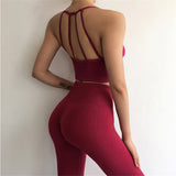 Yoga Set Sport Wear Women Sports Suit