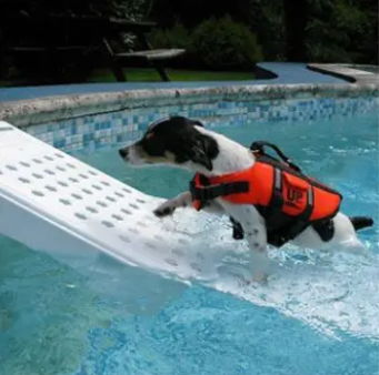 Skamper Ramp Super Pool Ramp for Pets
