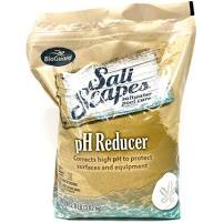 BioGuard SALTSCAPES pH REDUCER (8 LB)