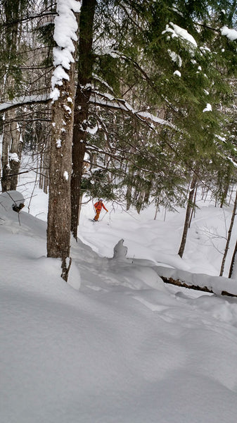Shaggy's Backcountry Skiing in Michigan