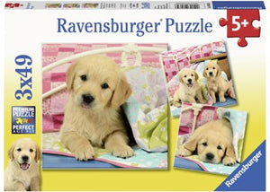RB CUTE PUPPY DOGS 3X49PCE