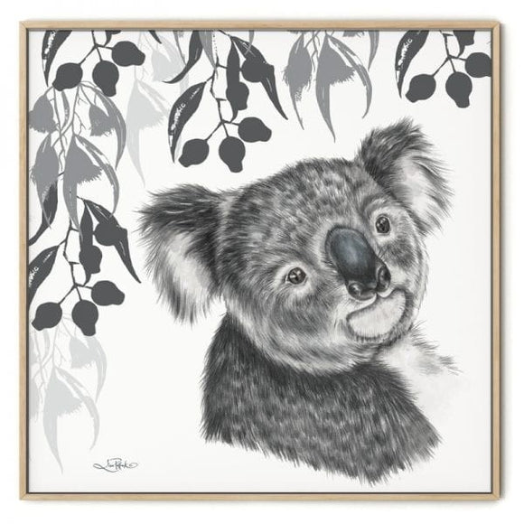 CANVAS FRAMED KOALA 50X50CM