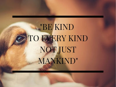 Gemma Favourite quote be kind to every kind not just mankind