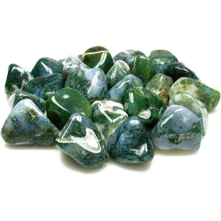 Group of Green Moss Agate Tumbled Gemstones