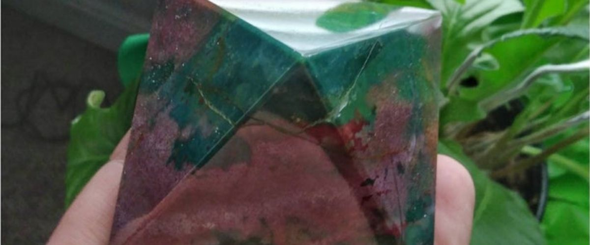 Large piece of indian agate with green leaves near by