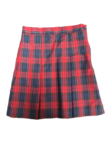 ECA plaid skirt