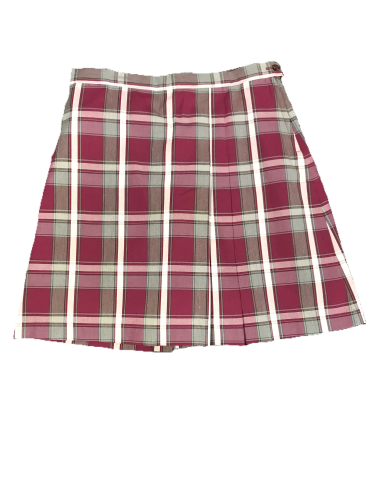 TCA plaid skirt