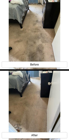 pet stain and odor remover in huntington beach california