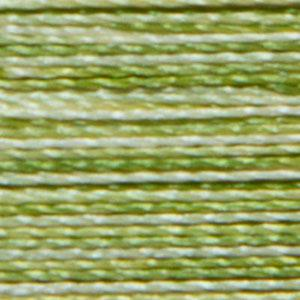 Isacord 9868 Variegated Limemade