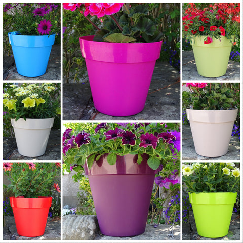 Trends Collection Planters