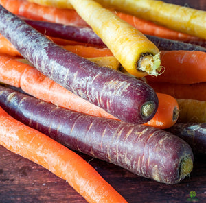 Carrot Rainbow Mix 6 Pack - PRE ORDER