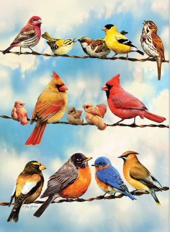 Cobble Hill 35pc Tray Puzzle Blue Sky Birds