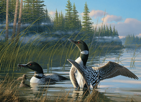 Cobble Hill 1000pc Puzzle 80107 Common Loons