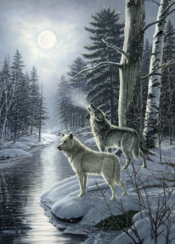 Cobble Hill 1000pc Puzzle 80108 Wolves by Moonlight