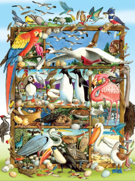 Cobble Hill 350pc Family Puzzle Birds of the World