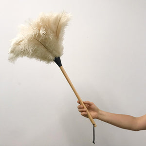 Ostrich Feather Duster - White