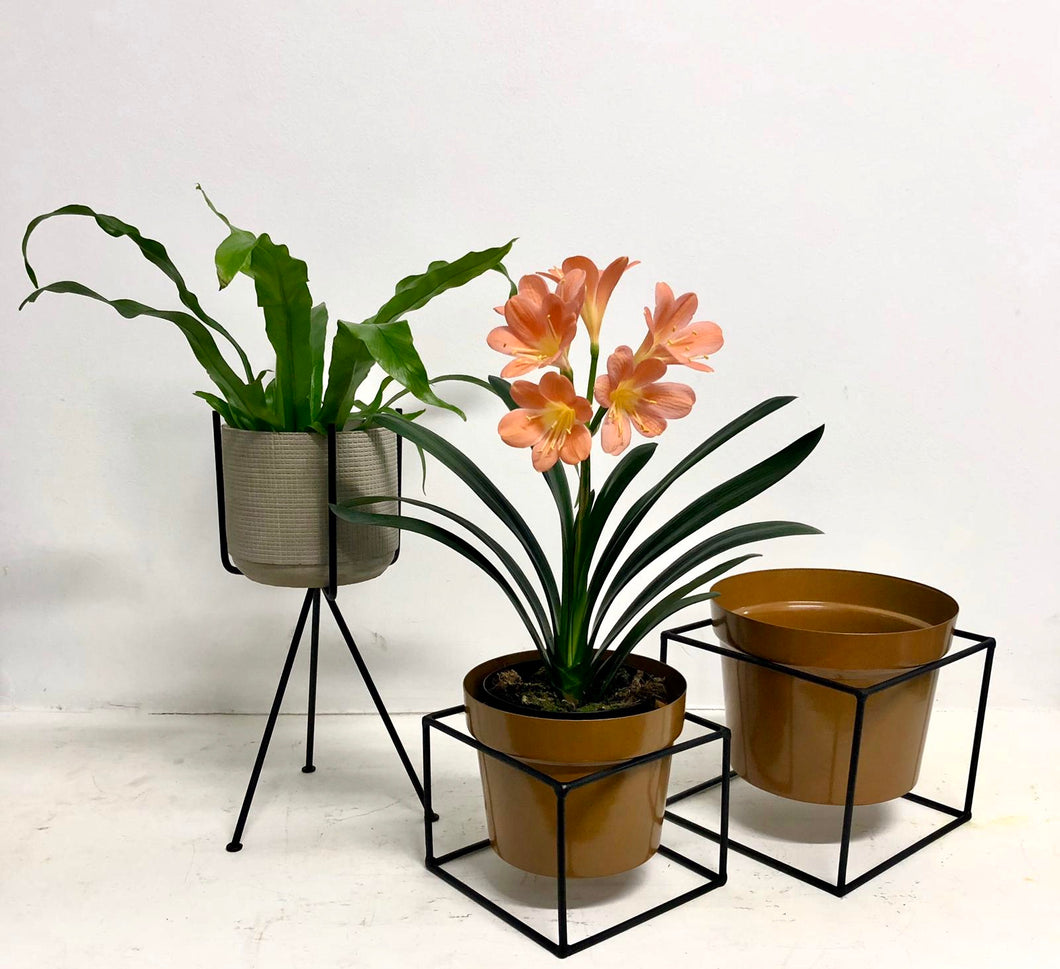 Square Metal Plant Stands