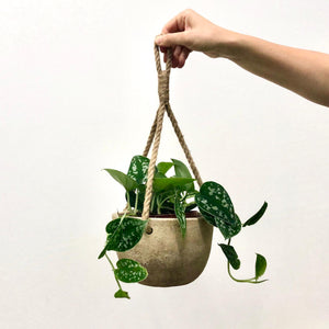 Clay Hanging Pot - Antique Grey