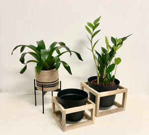 Square Wooden Plant Stands