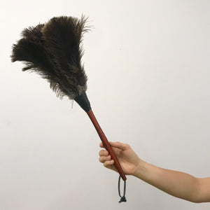 Ostrich Feather Duster - Medium 50cm