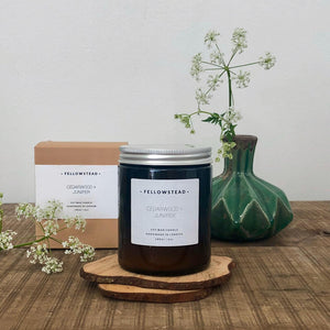 Fellowstead Orange peel & Ginger Candle
