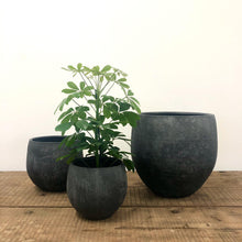 Load image into Gallery viewer, Large Black Bali Pot