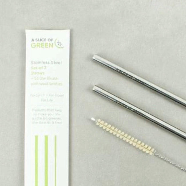 Stainless Steel Straws - Set of 2