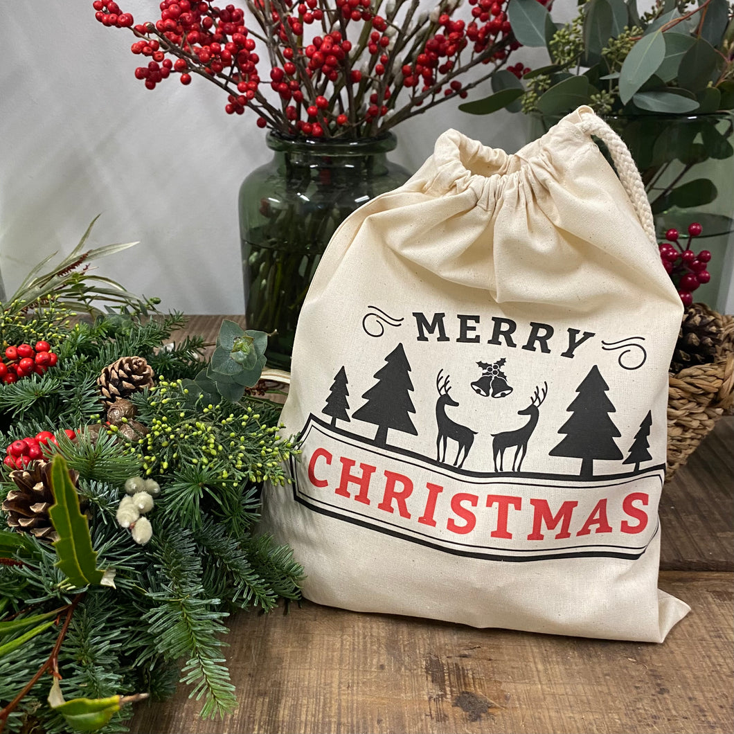 Christmas Gift Bag - Medium